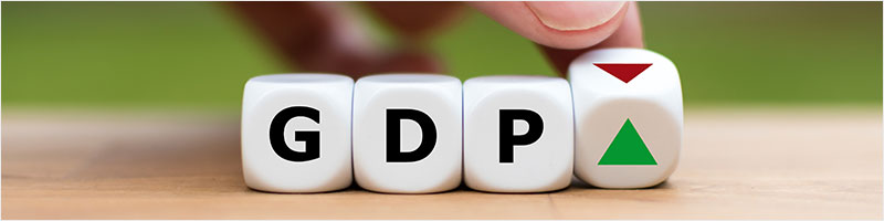 What is GDP (Gross Domestic Product)